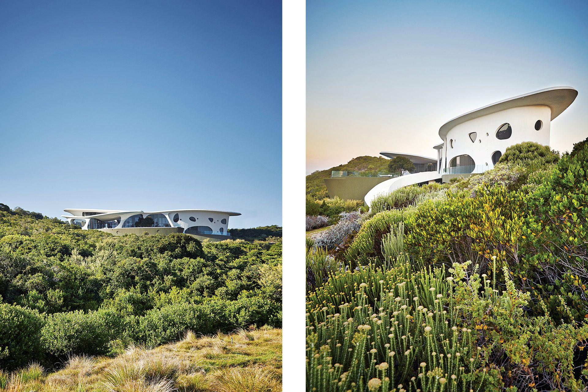 Las aberturas dejan que la naturaleza atraviese la casa en todos los ambientes.