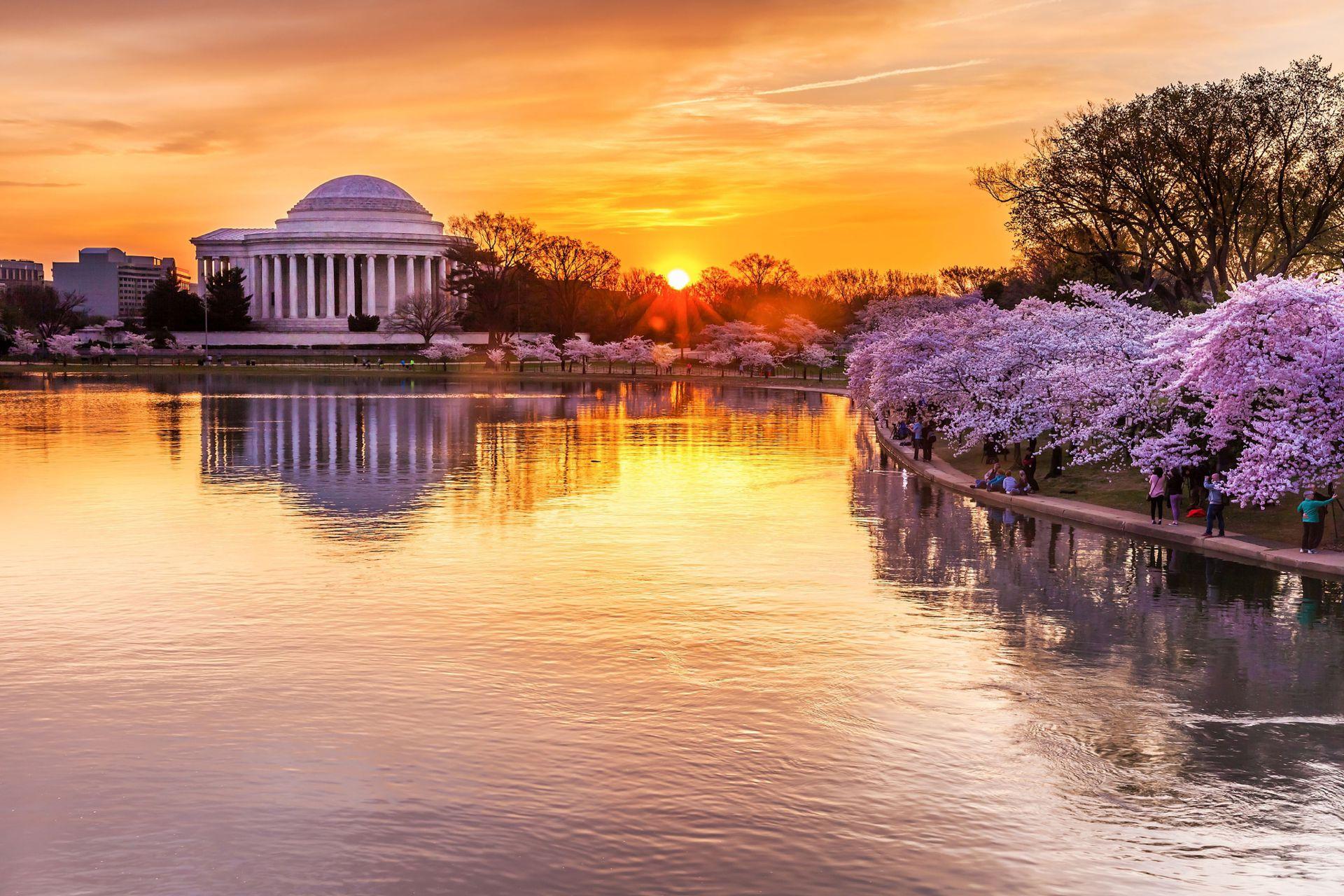 Cuenca Tidal con vista al monumento a Jefferson, Washington D.C.