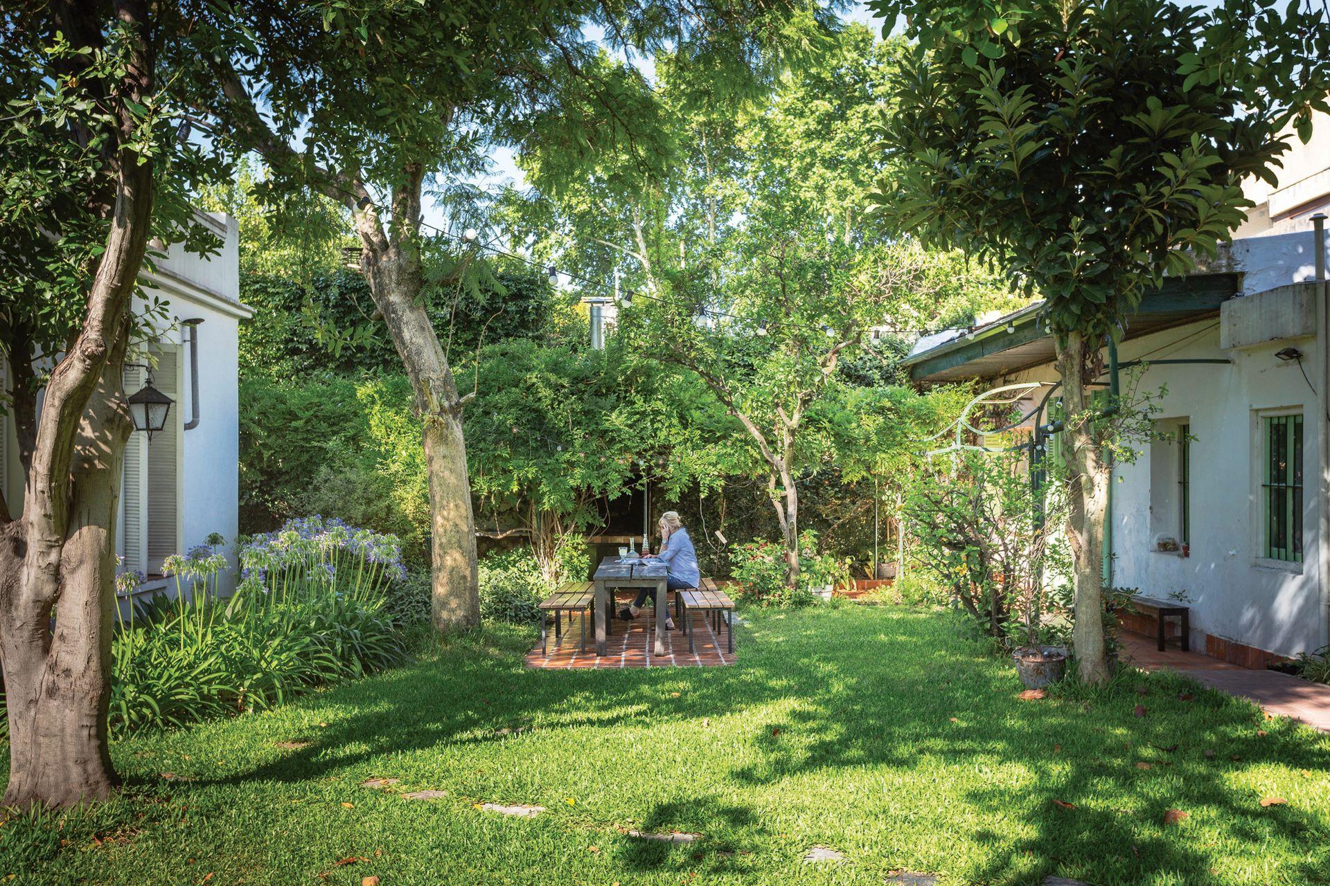Miriam, fanática de la jardinería, se ocupó de recuperar el césped –que estaba muy maltrecho–, de poner canteros de agapantos y de podar y mantener en buena forma los ejemplares históricos de la casa: un nogal, un limonero, un olivo y un árbol de paltas
