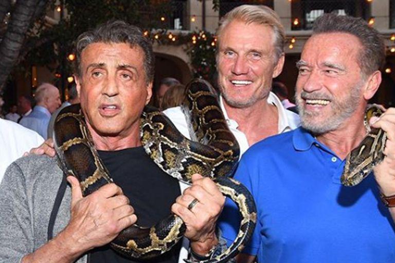 La divertida chicana de Schwarzenegger a Stallone, en Instagram