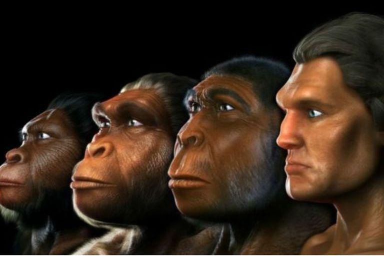 Se pudo establecer un marco cronológico preciso para la sucesión de ocupaciones humanas registrada en el yacimiento