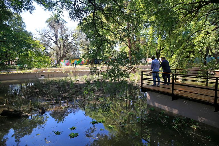 El estanque, como se denomina el espacio, estará abierto desde mañana entre las 10 y las 17, de martes a domingo