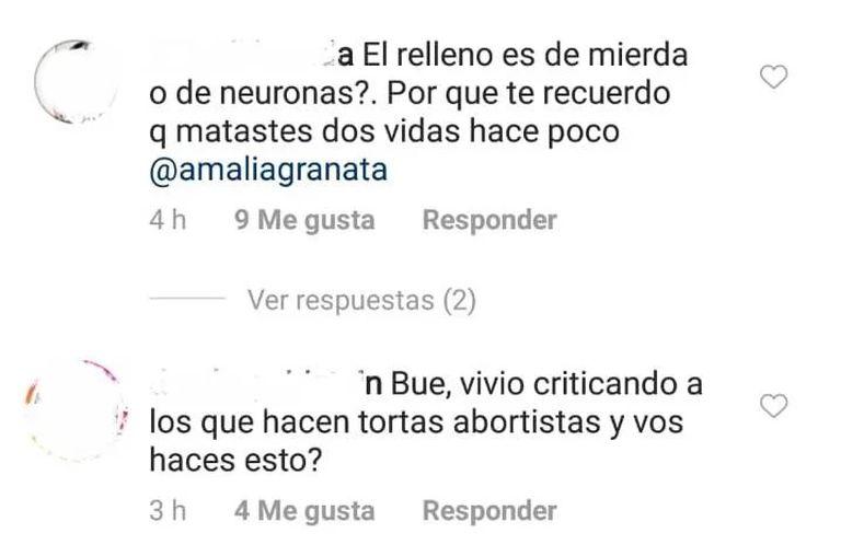 """Los militantes abortistas no tuvieron deparos en insultar a Granata por sus actitudes a favor de la """"pro-vida""""."""