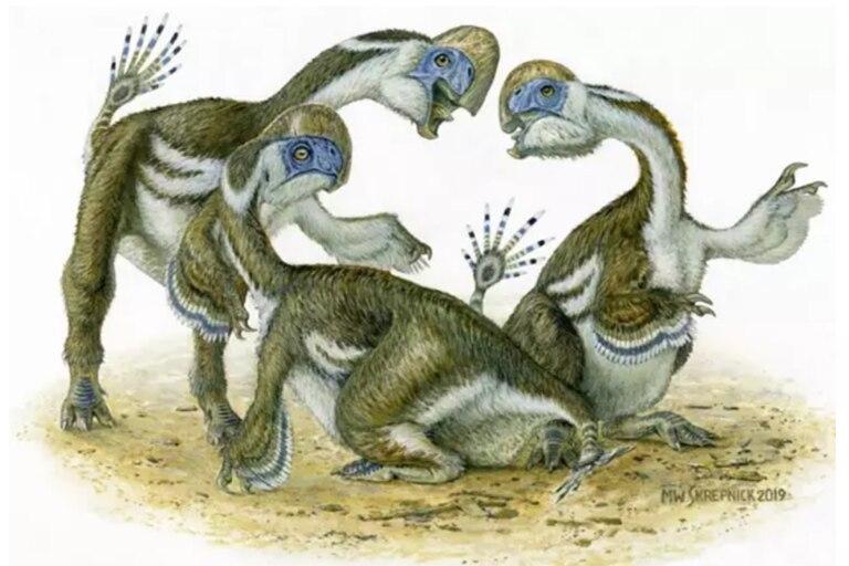 Tres dinosaurios Oksoko avarsan