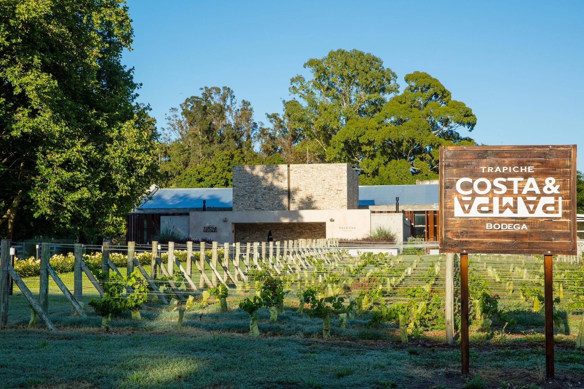 Costa & Pampa es la primera bodega argentina en producir vinos de influencia oceánica.