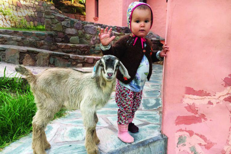 En la finca donde se hospedaron, ubicada en Huacalera, la menor de la familia disfrutó a full de la naturaleza. En el mercado de Tilcara se divirtió con un cabrito.