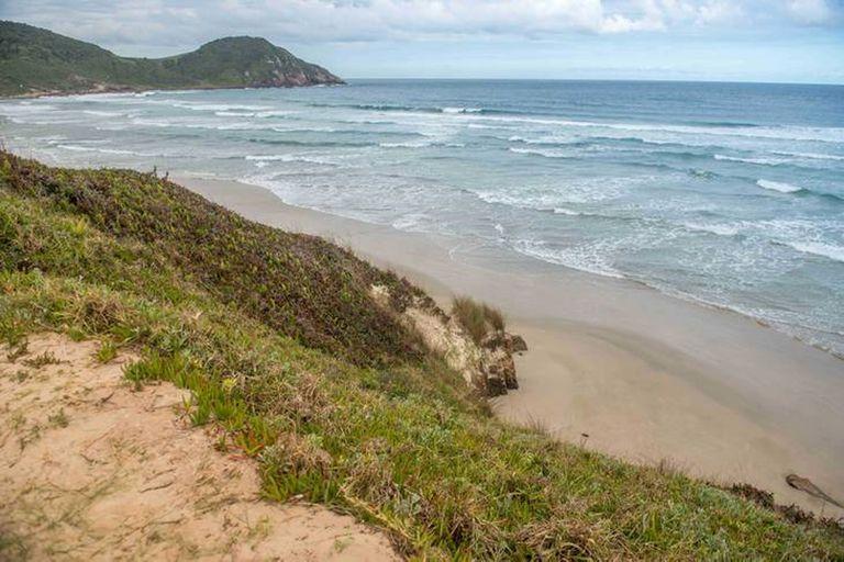 """Un grupo de científicos irlandeses refutó la teoría que advertía la """"extinción"""" de las playas antes del 2100"""