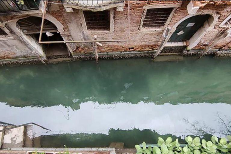 Las aguas de Venecia se ven cada vez más cristalinas.