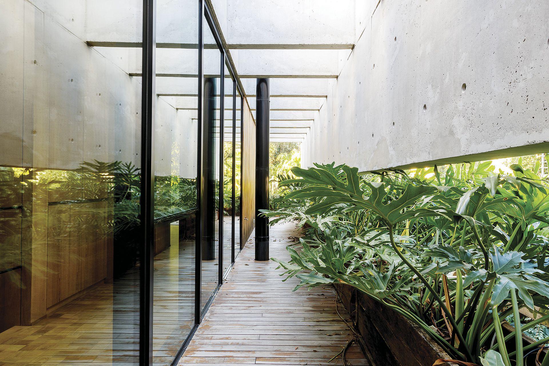 El pasillo se comunica con el exterior gracias a superficies vidriadas de piso a techo. Siguiendo el estilo, el pasillo que distribuye a los dormitorios tiene piso de tacos de lapacho, paredes y cielo raso de goiabao.