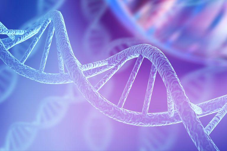 Científicos de Israel, España y otros países han fabricado un dispositivo capaz de medir la corriente eléctrica a través del ADN, lo que ha permitido descubrir cómo la conduce a grandes distancias. El hallazgo abre la puerta a una nueva generación de nanodispositivos electrónicos basados en ADN
