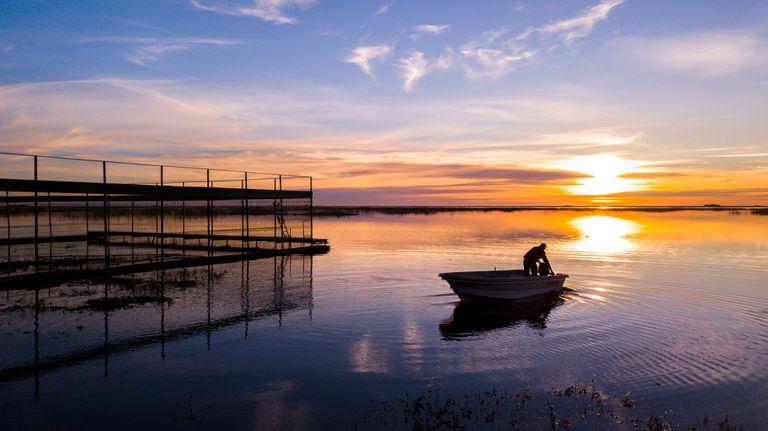 El corral de Nutria Gigante en la Isla San Alonso - Gentileza: Nico Guastavino CLT Argentina
