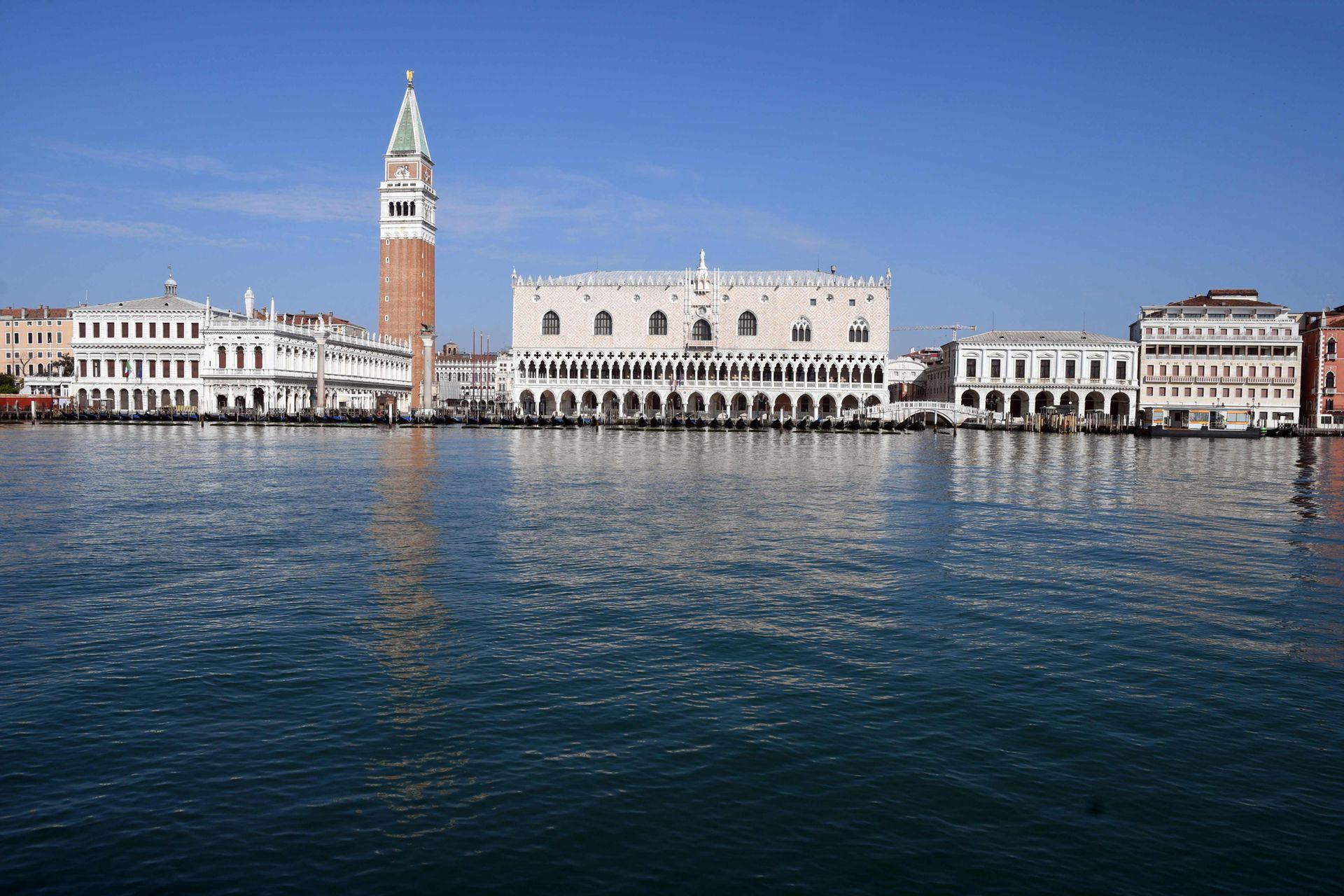 Venecia, sin turistas, se llenó de peces, patos y cisnes, en algunos lugares hasta puede verse el fondo