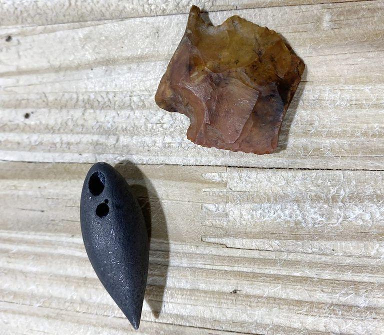 Dos piezas arqueológicas fueron descubiertas en el estómago de un caimán