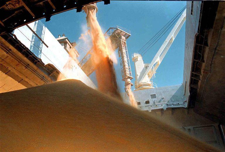 La exportación de soja está en manos de grandes firmas