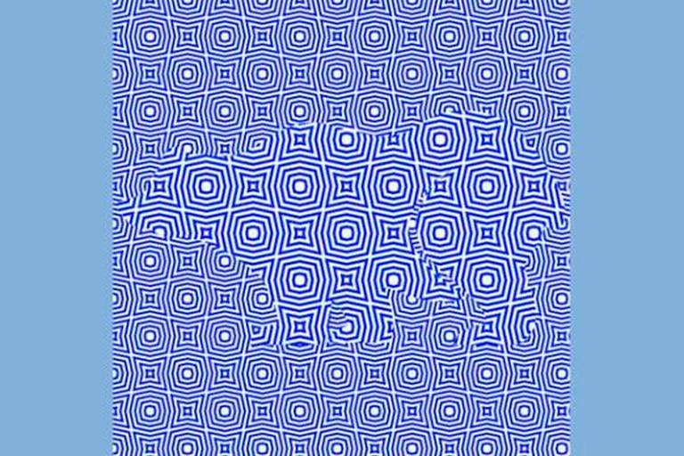 Un nuevo desafío visual, viralizado en las últimas horas, propone encontrar el animal en un fondo azul que genera un extraño efecto óptico