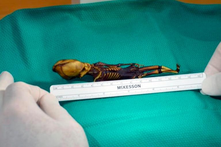 El diminuto cuerpo de Ata, la momia encontrada en la región chilena de Atacama