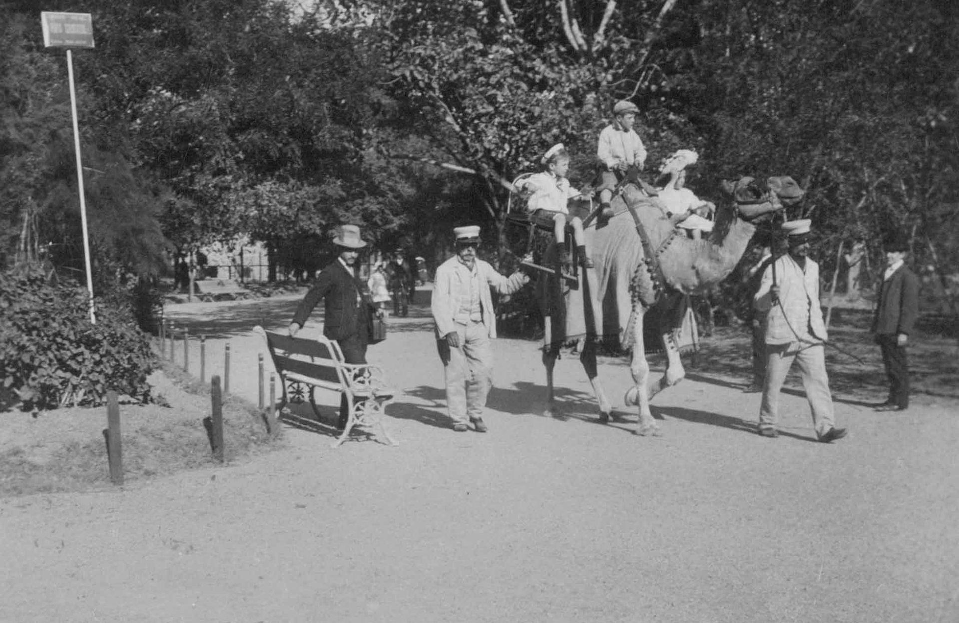 De paseo en camello por el Zoológico de Buenos Aires.
