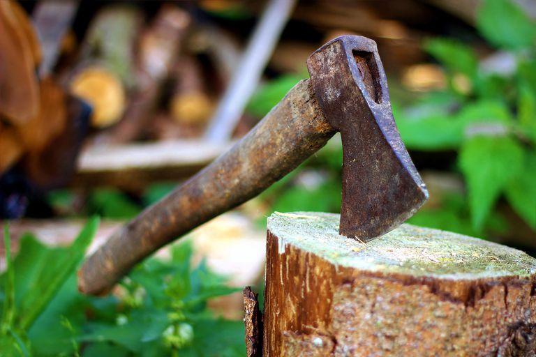 La actividad de los leñadores explica parte de la raíz del dicho.