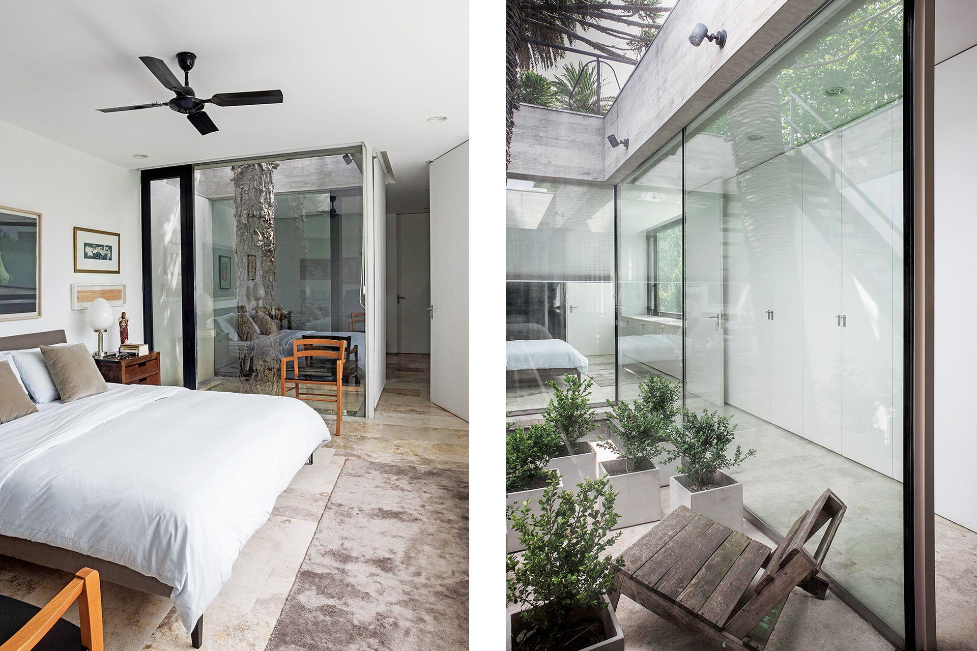 Los patios internos son vitrinas que exhiben las joyas de la casa: las palmeras y la araucaria. Además, desde uno de ellos se accede a la terraza verde. Cama (Federico Churba). El ventilador se compró en negro, del mismo color que las aberturas de aluminio.