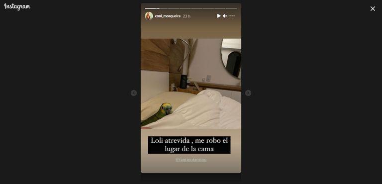 """Loli la lora chaqueña que puso en """"jaque"""" la relación entre Alejandro Fantino y Con Mosqueira"""