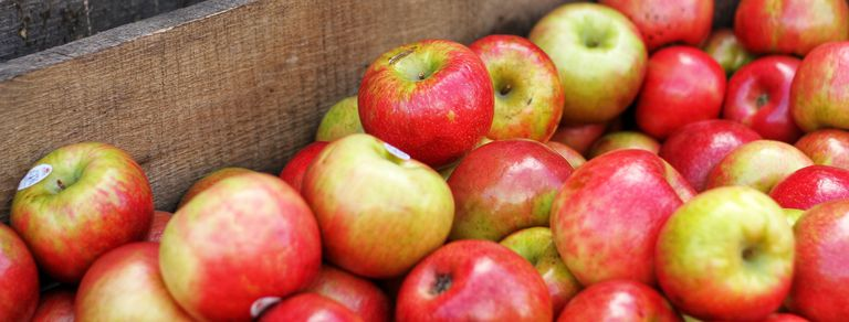 En postres, ensaladas o conservas: ideas para aprovechar la cosecha de manzanas