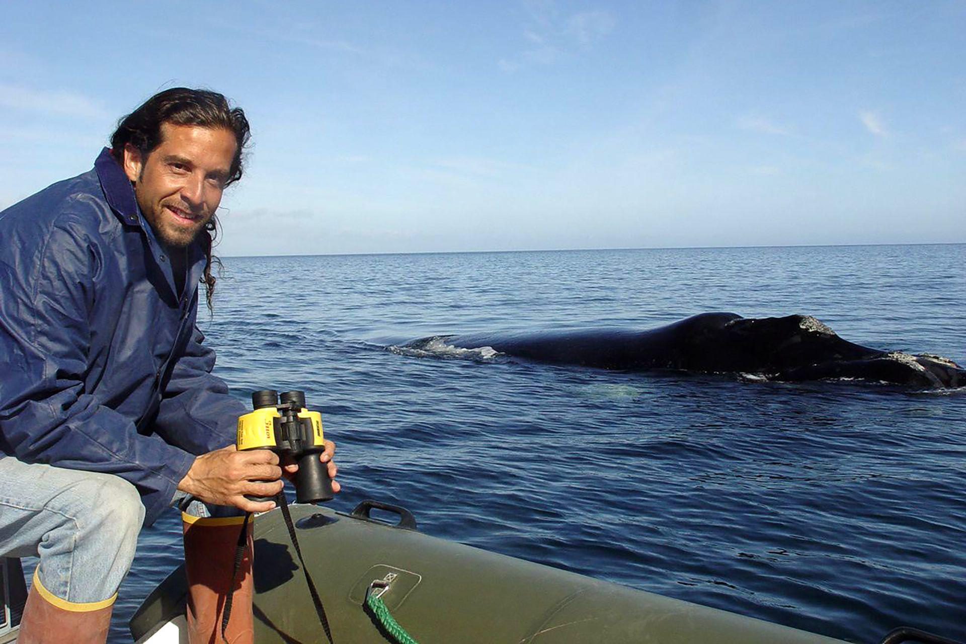 Mariano Sironi es Doctor en Biología, director científico y socio fundador del Instituto de Conservación de Ballenas (ICB) desde el año 1996