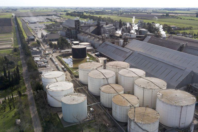 Una comisión investigará supuestos subsidios; inquieta a los exportadores un eventual nuevo cierre del mercado