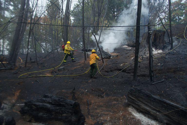 El incendio forestal en la zona de El Hoyo y Golondrinas, en cercanías de El Bolson, consumió decenas de viviendas