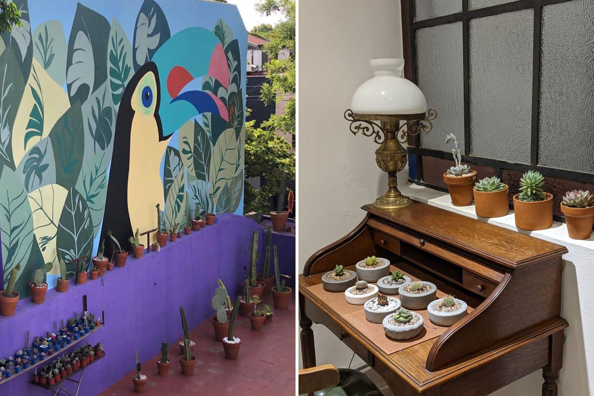 Suculentas del Soho, una terraza llena de plantas en el corazón de un barrio que reúne diseño, gastronomía y cultura.
