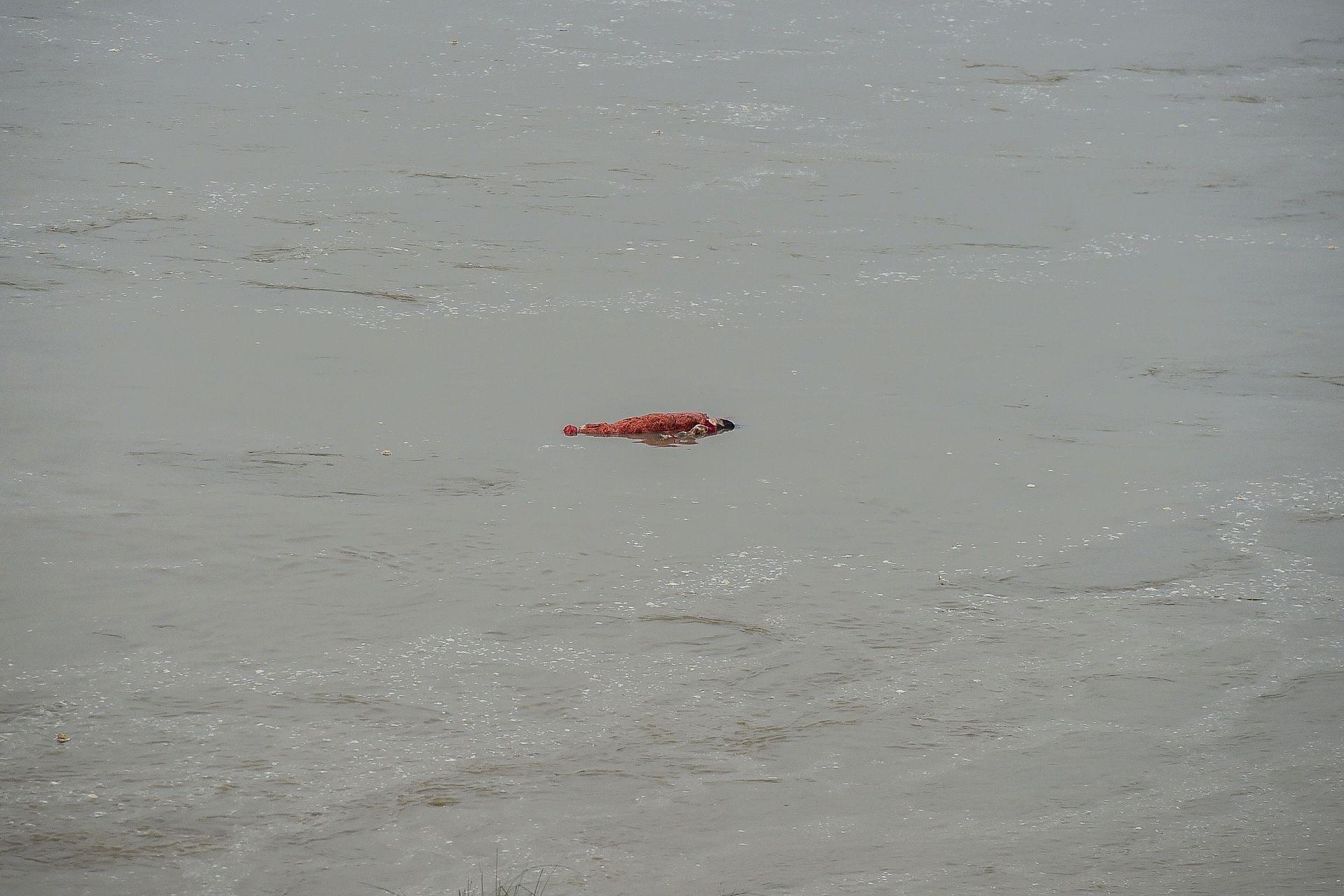 Los restos de un cuerpo que fue enterrado anteriormente están a flote después de que el aumento del nivel del agua del río Ganges arrasara con algunas de las tumbas