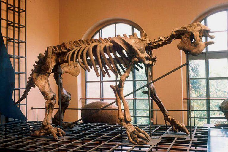 Curiosidades: la historia de la gran bestia hallada en Luján en 1787