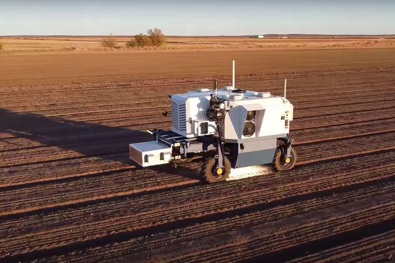 Sin pesticidas: Autonomous Weeder, el robot que elimina malezas con un láser