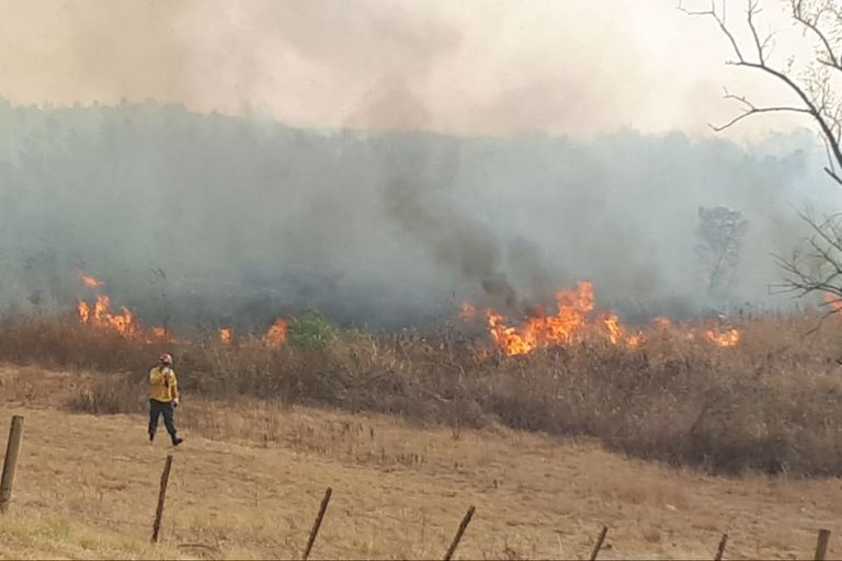 Islas del Paraná. Demandan por $150 millones a productores y critican a Cabandié
