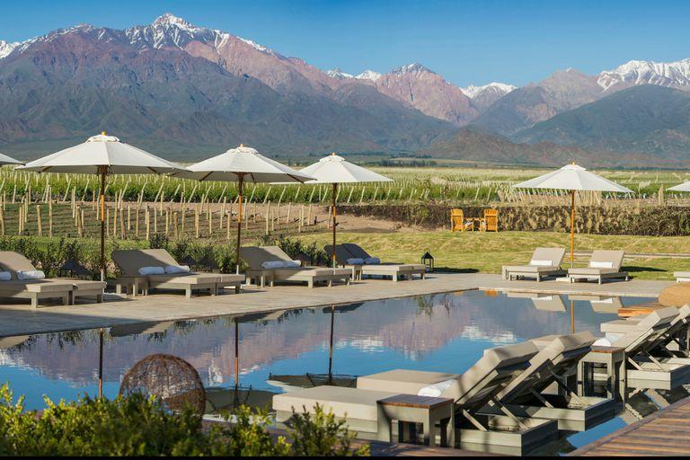 En Mendoza. En vines los valores de los viñedos de una hectárea rondan los US$250.000