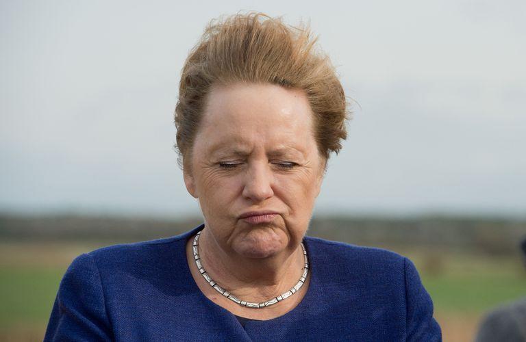 Un retrato de Merkel en 2019