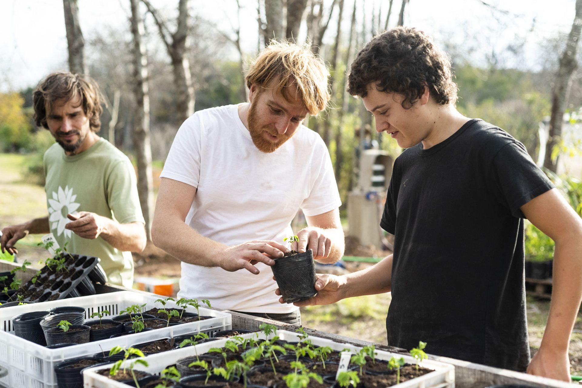 El vivero Flora Nativa es un proyecto de la ONG sin fines de lucro Germinar. Queda en Belén de Escobar. También organizan talleres, charlas y encuentros de voluntariado con la comunidad.