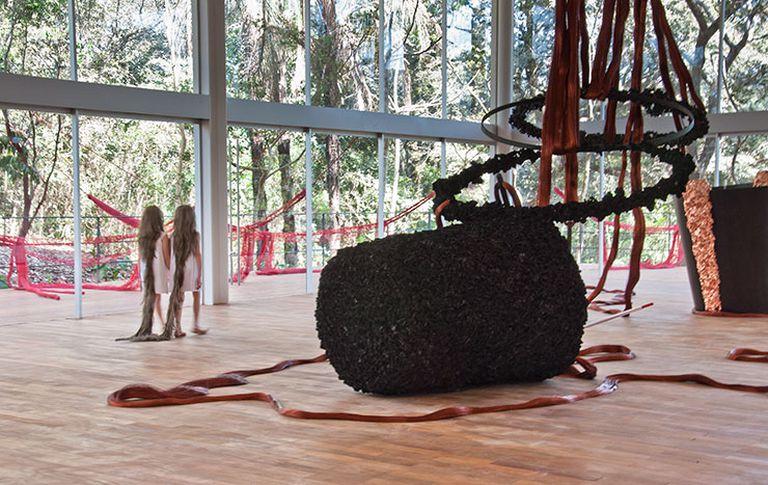 Xifópagas Capilares Entre Nós en Instituto Inhotim, Brumadinho, Brasil, 2012
