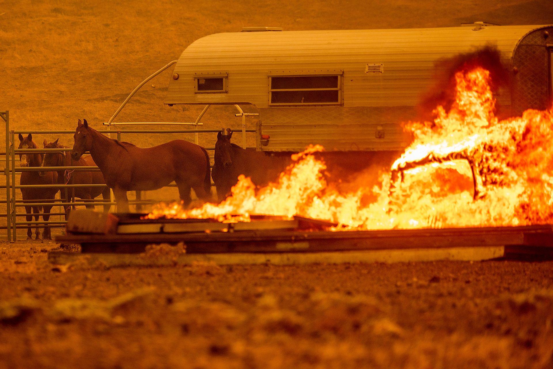 California declara el estado de emergencia por los incendios mientras continúan activos 30 focos