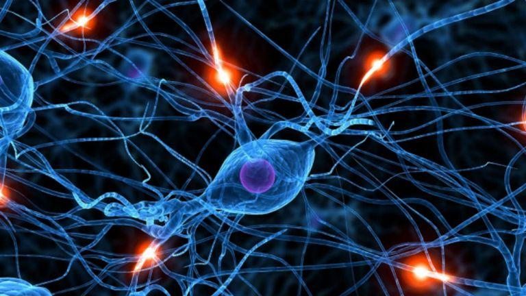 En el cerebro se produce una pérdida selectiva en el número de neuronas que se encargan de la producción de un neurotransmisor llamado dopamina