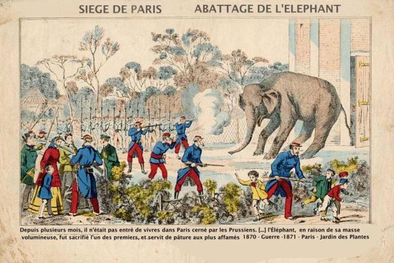 Una ilustración de la época muestra el sacrificio de uno de los elefantes del zoológico de París en 1870, cuando la ciudad estaba sitiada y los habitantes padecían una feroz hambruna