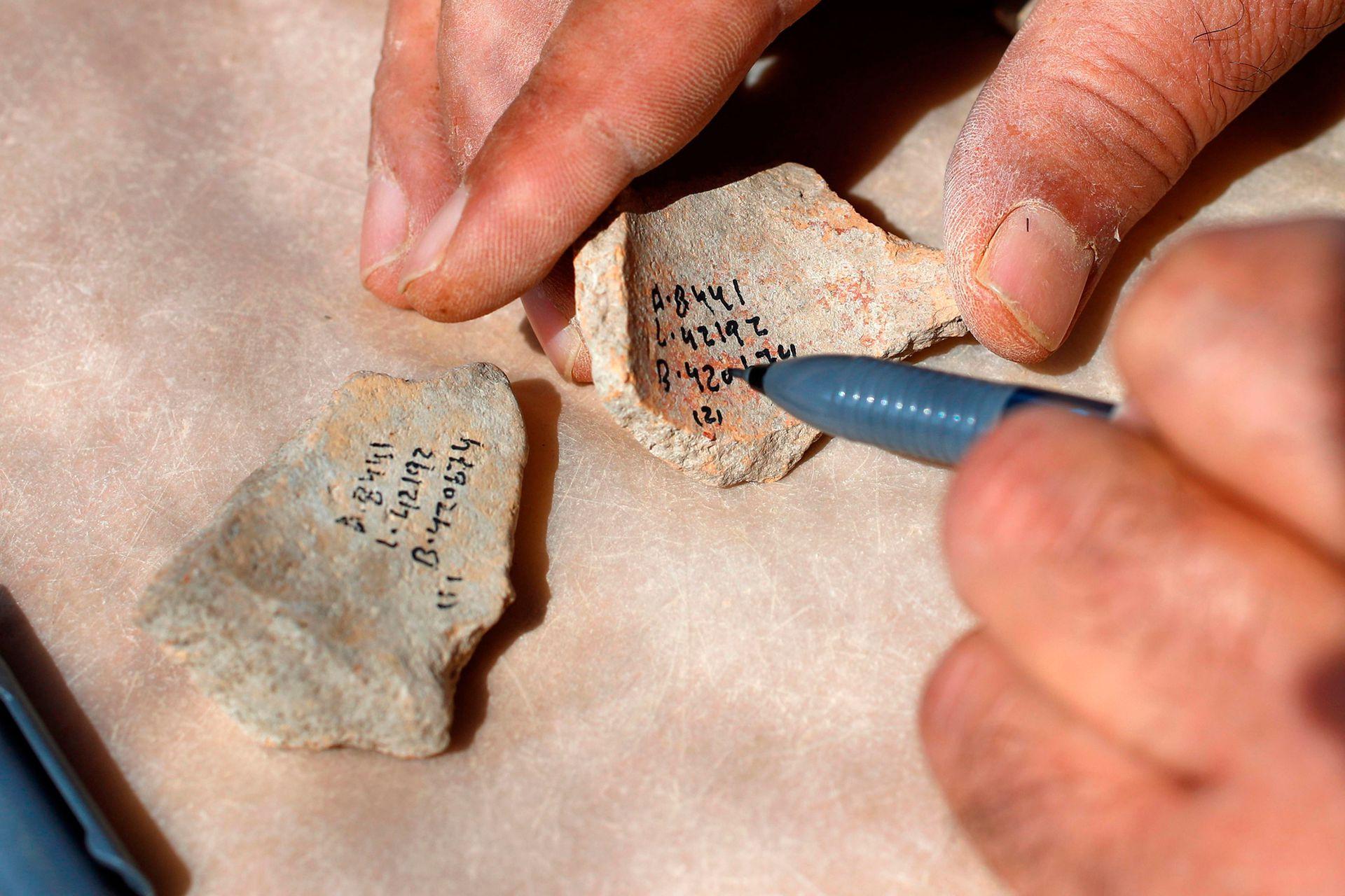 Cuatro millones de fragmentos de cerámica, herramientas de sílex y jarrones de piedra y basalto, parte de los cuales procedían de Egipto