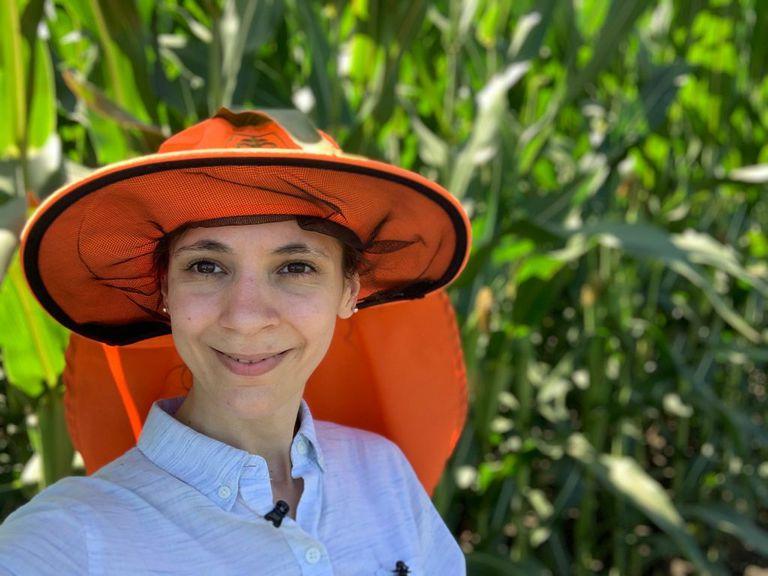 La agrónoma Paula Demarco, haciendo investigación a campo en Kansas, Estados Unidos