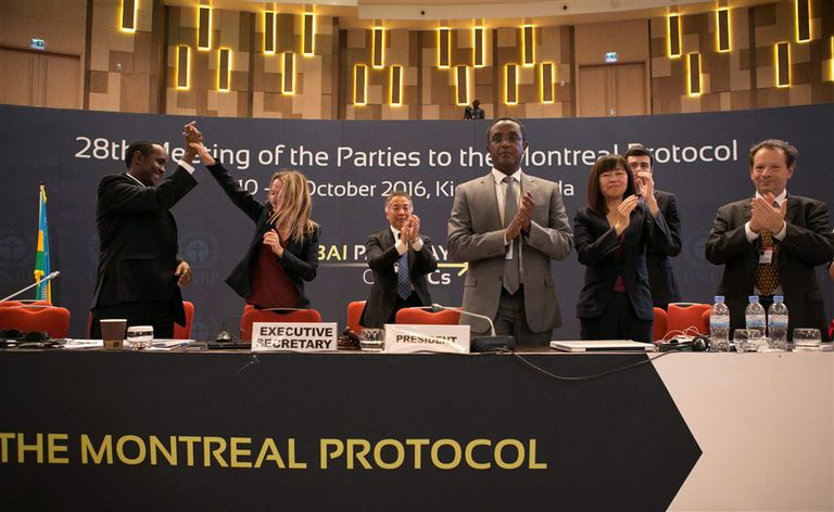 Miembros del comité organizador de la cumbre de Kigali, Ruanda, celebran el acuerdo contra el cambio climático