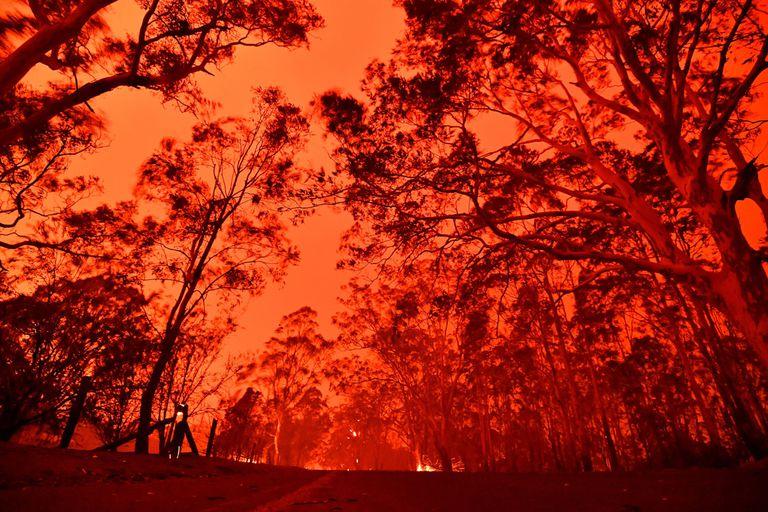 El cielo de la tarde se pone rojo por los incendios forestales en el área alrededor de la ciudad de Nowra en el estado australiano de Nueva Gales del Sur el 31 de diciembre de 2019. Miles de turistas y locales se vieron obligados a huir a las playas en el sureste de Australia.