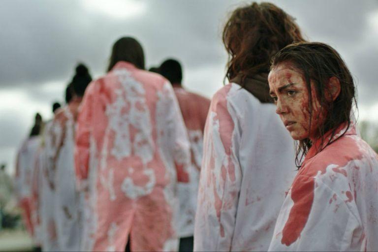 Raw, de Julia Ducournau, film disponible en Netflix