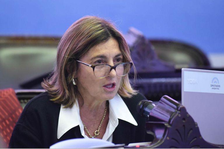 """La diputada Alicia Fregonese: """"Necesitamos salir de los parches, reactivar la economía y no vivir de emergencia en emergencia"""""""