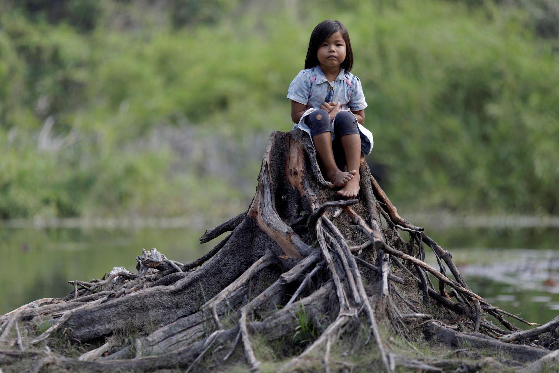 Una niña indígena de la tribu Parintintin se sienta en el tronco de un árbol cortado en la aldea de Traira, cerca de Humaita, estado de Amazonas, Brasil