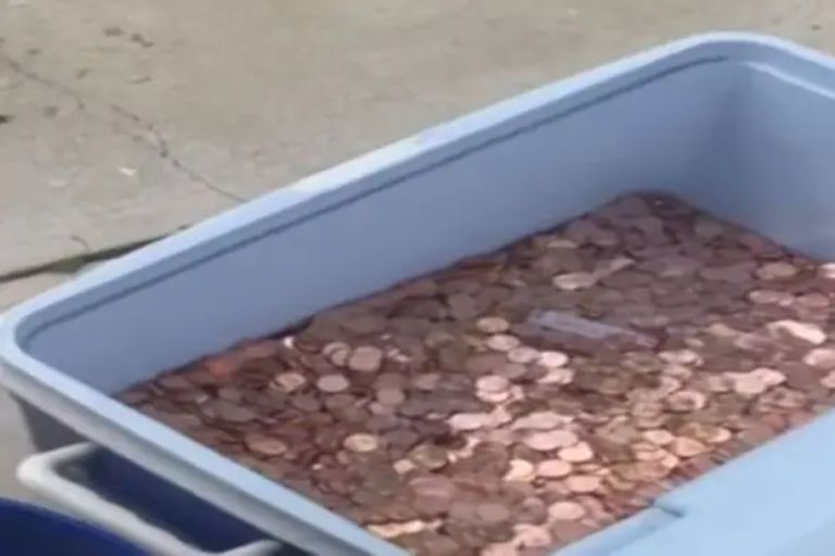 Unos días antes de cumplir 18 años, una joven recibió de su padre una contribución insólita: 80.000 monedas de un centavo que el hombre arrojó en el jardín de la casa como pago de la última cuota de manutención
