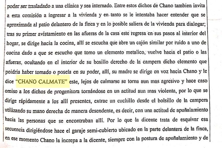 Declaraciones del caso Chano Charpentier