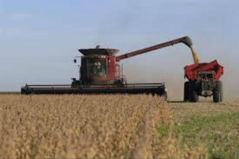 Las empresas agropecuarias, ante una mayor presión fiscal